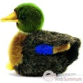 Video Anima - Peluche colvert 12 cm -3570