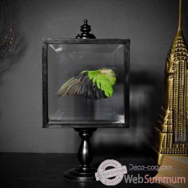 aile verte inseparable d 39 abyssinie objet de curiosit pu554 1 dans art sur deco coq. Black Bedroom Furniture Sets. Home Design Ideas